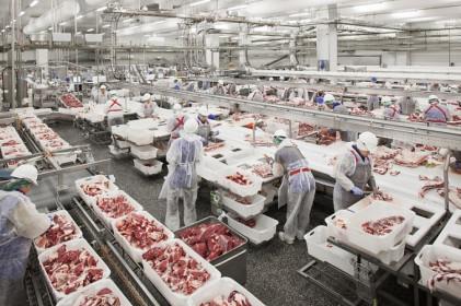 50.000 tấn thịt heo đổ về, dân Việt được ăn lợn giá rẻ