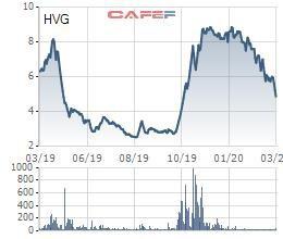 Thị giá giảm gần 1 nửa, một TV. HĐQT của Thủy sản Hùng Vương (HVG) vẫn đăng ký thoái sạch vốn