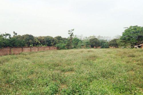Mua đất Hoà Lạc, dính chiêu của cò 10 năm chôn tiền đồi hoang