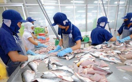 Nam Việt (ANV) chi hơn 127 tỷ đồng tạm ứng cổ tức đợt 1/2019
