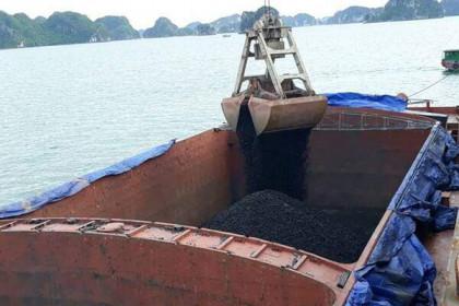 Thị trường chứng khoán giảm mạnh, Việt Phát muốn chào bán cho cổ đông tỷ lệ 1:1