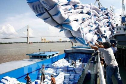 Đề nghị xem xét  cho thông quan doanh nghiệp xuất khẩu gạo đã ký hợp đồng  trước ngày 24/03