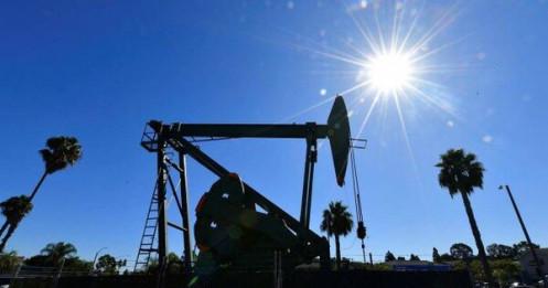 Giá dầu thô Mỹ rớt xuống dưới 20 USD/thùng, thấp nhất trong 18 năm