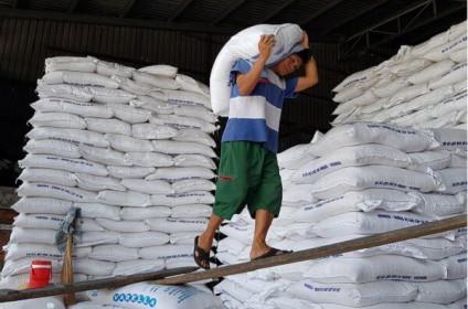 Đừng để cơ chế 'giết chết' doanh nghiệp gạo