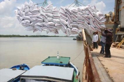 39 doanh nghiệp chỉ gom được 70% số gạo xuất khẩu