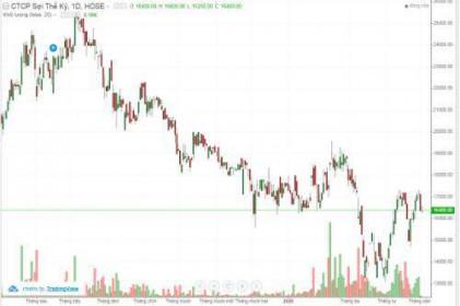 Cổ phiếu STK bứt phá hậu dịch?