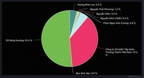 Kế hoạch kinh doanh đột biến, Bất động sản Trường Thành (TEG) phi mã 99% trong 2 tuần