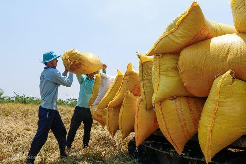 Kinh tế Việt Nam liệu có đuổi kịp Thái Lan và bài học tránh rủi ro?