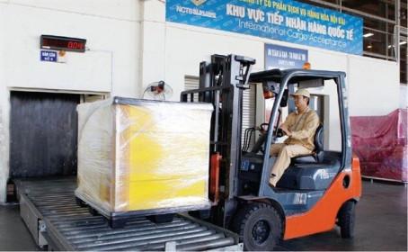 Noibai Cargo (NCT) dự kiến chia cổ tức năm 2019 với tỷ lệ 85%