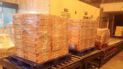 2 tấn vải thiều Việt Nam đầu tiên đã đến Nhật Bản, chờ lên kệ siêu thị