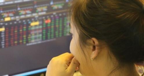 """Thị trường chứng khoán: """"Cơn mưa"""" cổ tức khủng, niềm vui có kéo dài?"""