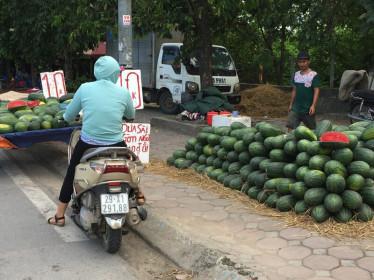 """Hoa quả nhập nhèm xuất xứ, giá rẻ """"giật mình"""" tràn lan vỉa hè Hà Nội"""