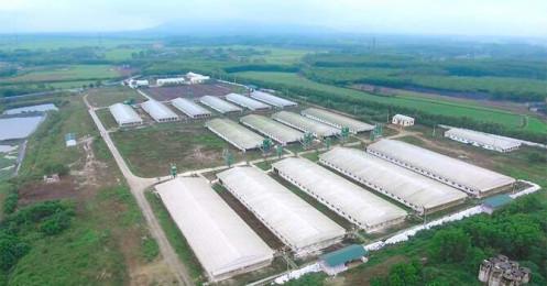 Hơn 1.000 tỷ đồng đầu tư khu chăn nuôi công nghệ cao tại Gia Lai