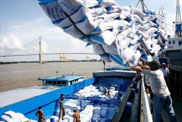 Giá gạo Ấn Độ tăng trở lại, giá các nông sản giao kỳ hạn của Mỹ đồng loạt giảm