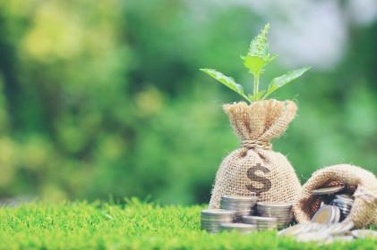 Luật Doanh nghiệp 2020 mở rộng cửa cho thị trường vốn