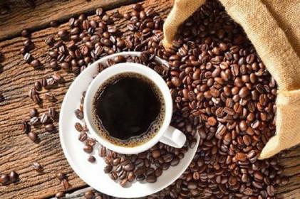 Biến động từ thị trường tài chính khiến giá cà phê tăng mạnh