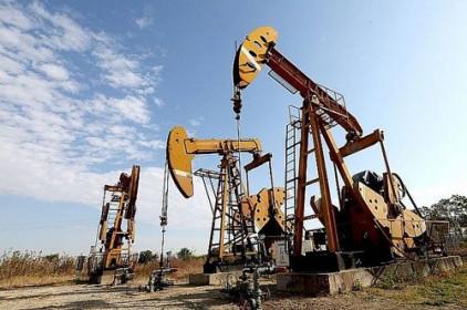 Giá xăng, dầu (30/7): Tăng bật