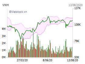 Công ty 'cháu' muốn gom vào 2 triệu cổ phiếu của Vinamilk