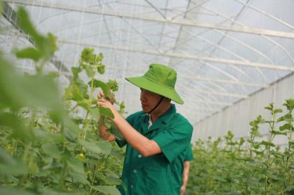 7 tháng đầu năm 2020, doanh nghiệp thành lập mới của Thanh Hoá đứng đầu Bắc Trung Bộ