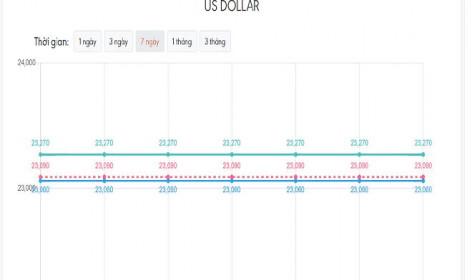 Tỷ giá USD hôm nay 22/8: Hồi phục nhẹ
