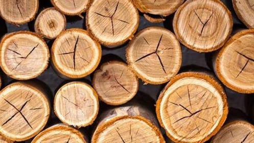 """Sức bật """"tỷ đô"""" của ngành công nghiệp gỗ"""
