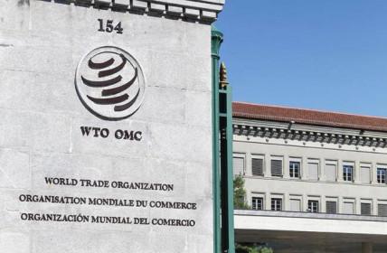 Ấn Độ kêu gọi WTO có cơ chế đặc biệt sản xuất đủ vaccine cho toàn cầu