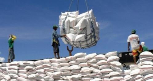 Vì sao Việt Nam nhập khẩu gạo Ấn Độ