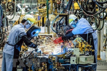 Fitch Solutions nâng dự báo tăng trưởng kinh tế Việt Nam
