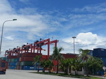 Cảng Đình Vũ (DVP) tạm ứng cổ tức năm 2020 với tỷ lệ 15%