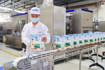 Vinamilk 'mở màn' 2021 ấn tượng với lô hàng xuất khẩu lớn