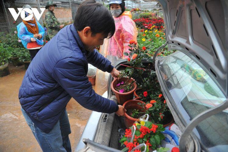 Giá nhiều loại hoa Tết ở Xuân Quan lên đến cả chục triệu đồng