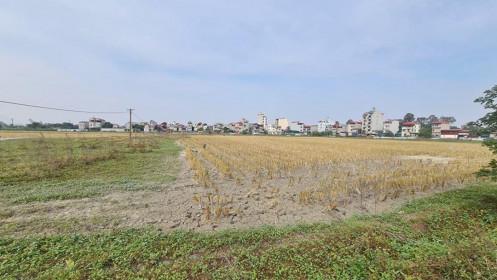 Rầm rộ rao bán đất nền tại dự án vẫn chỉ là đồng ruộng ở Bắc Ninh