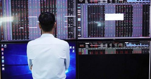 """Thanh khoản thị trường tăng cao, phần lớn đến từ """"tiền thịt"""""""