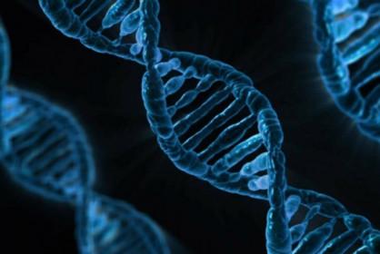 Trung Quốc phát triển liệu pháp gene làm chậm lão hóa