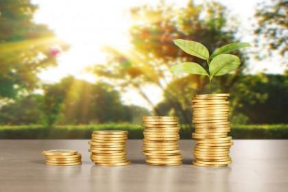 Thị trường tài chính 24h: Nhà đầu tư mạnh tay xuống tiền, chứng khoán hồi phục