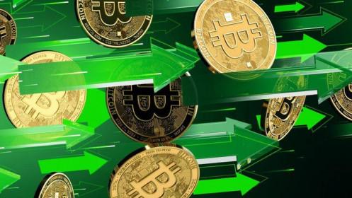 Giá Bitcoin hôm nay ngày 29/1: Bitcoin hồi phục trở lại trên mốc 33.000 USD, tuy nhiên đồng Dogecoin tăng trưởng hơn 500% mới là tâm điểm của sự chú ý