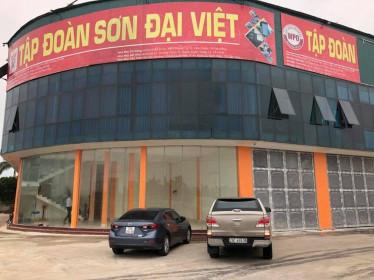 Sơn Đại Việt (DVG) báo cáo lãi quý IV/2020 tăng 36% so với cùng kỳ