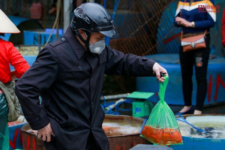 Thị trường cá chép phục vụ ông Công ông Táo ra sao?