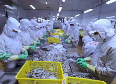Xuất khẩu tháng 1/2021 của Việt Nam đạt 27,7 tỷ USD, tăng 50% so với cùng kỳ