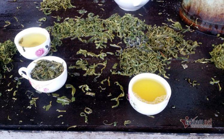 Kỳ tích trà Thái 5 triệu/kg, quà xách tay lãnh đạo 21 quốc gia