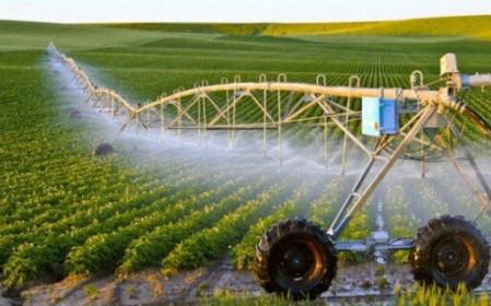 Điều kiện chuyển nhượng đất nông nghiệp năm 2021