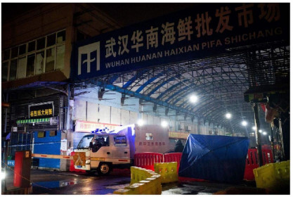 2 động vật nào bị nhóm điều tra WHO nghi ngờ phát tán virus gây Covid-19 tại Vũ Hán?