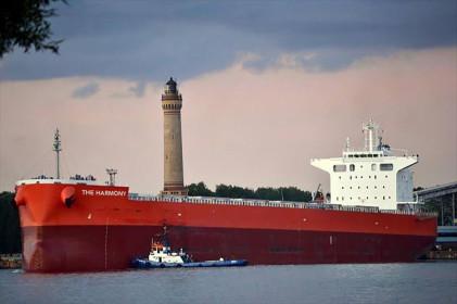 Hòa Phát mua 2 tàu 90.000 tấn chuyên chở quặng sắt, than