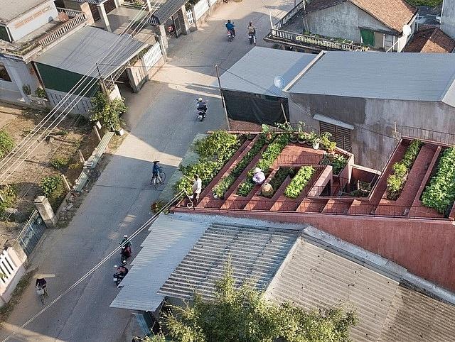3 căn nhà kiểu ruộng bậc thang ở Việt Nam, ngập sắc xanh ấn tượng