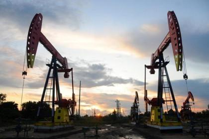 Thị trường dầu mỏ ghi nhận tuần giao dịch khởi sắc