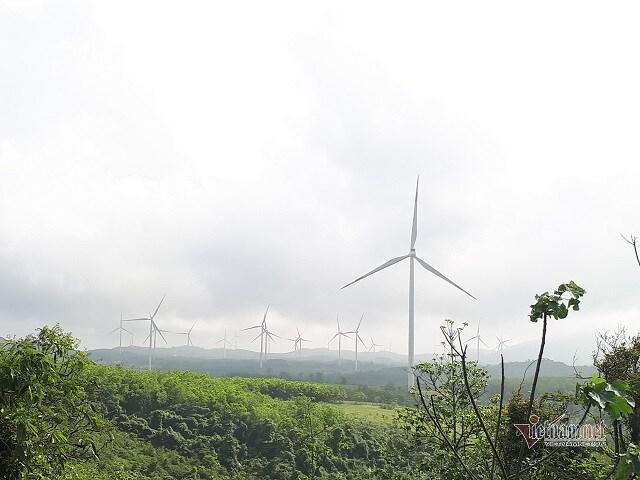 Thủ phủ điện gió Việt Nam: Khó tin 1 sào đất đồi hét giá 4 tỷ đồng