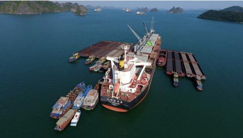 Quảng Ninh: Triệt phá băng nhóm 'làm luật' hàng tỉ đồng trên vùng biển Cẩm Phả