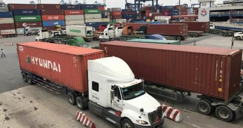 Container bớt khan hiếm, giá cước vẫn 'khủng'