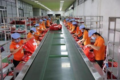 Thị trường nội địa giúp Thuận Đức (TDP) tăng 40% về doanh thu
