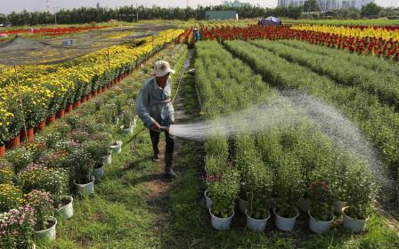 Những giấy tờ cần phải có để sang tên sổ đỏ đất nông nghiệp năm 2021
